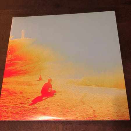 The Flaming Lips - The Terror - Vinyl
