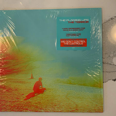 Image of The Flaming Lips - The Terror - Vinyl - 1 of 7