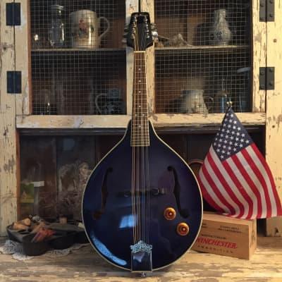 Jay Turser JTMN-20E Mandolin Early 2000's Transparent Blue for sale