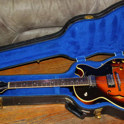 Very Rare Japanese 1981 D'agostino Hollowbody  OHSC All Original Gotoh P-ups,Noble Pots ,Cedar/Maple for sale