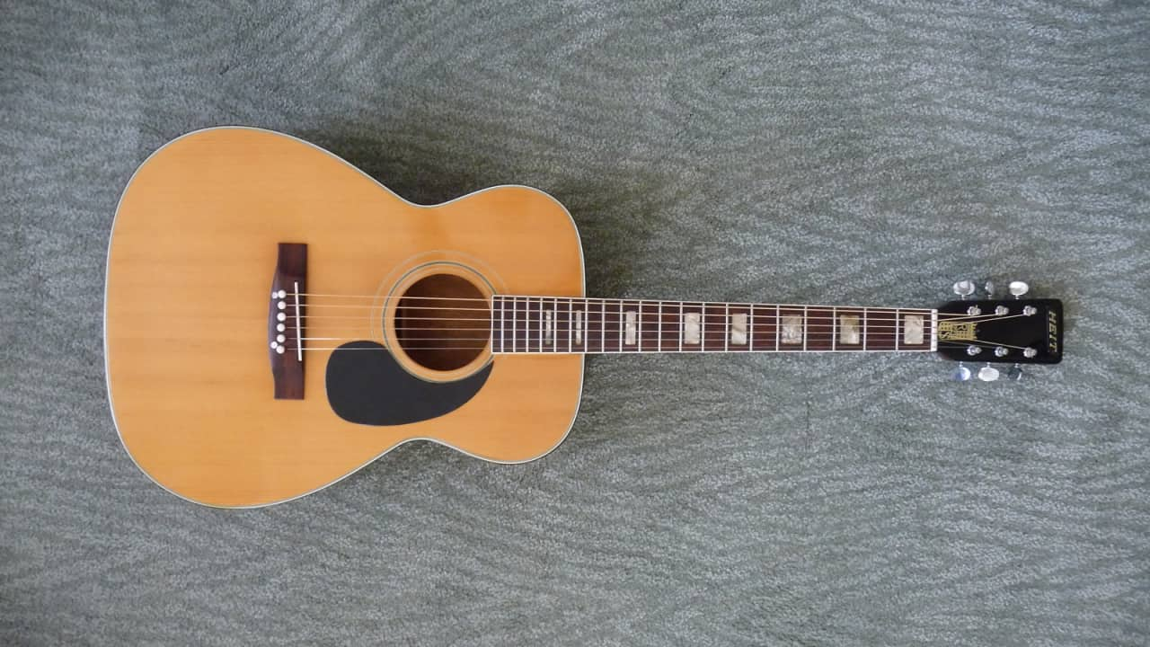 Heit Rs 42216 Acoustic Guitar With Alligator Case Reverb