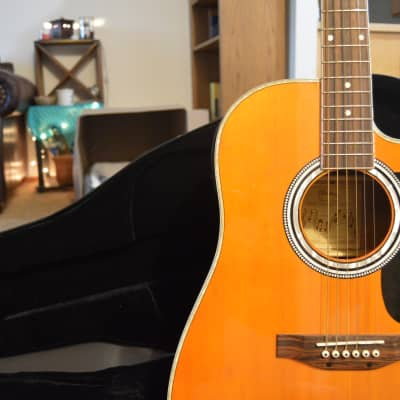 Esteban Electric/Acoustic Cutaway W/ Amp and DVD Lessons for sale