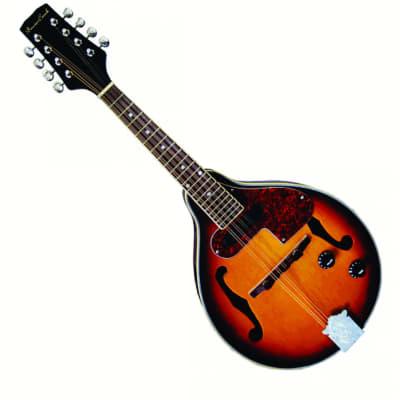 Beaver Creek BCMM201E Acoustic/Electric Mandolin BeaverCreek BCMM 201E for sale