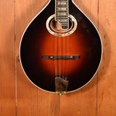 Michael Kelly A Style Mandolin w/ Pickup for sale