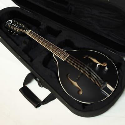 LUNA Moonbird A-style Mandolin NEW acoustic/electric Black Satin w/ CASE for sale