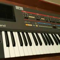 Roland  Juno 106 HS60