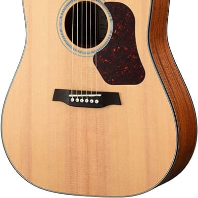 Walden D550E Natura Solid Spruce Top Dreadnought Acoustic-Electric Guitar - Open Pore Satin Natural