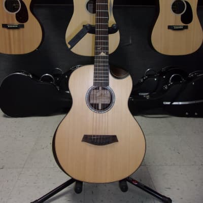 Islander Mini Guitar Rosewood for sale