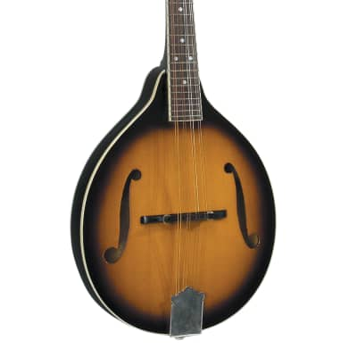 Rover RM-50 Deluxe Mandolin - Traditional Sunburst for sale