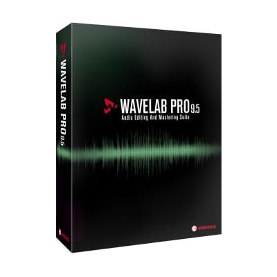 Steinberg Wavelab Pro 9.5 Audio Editing and Mastering Software