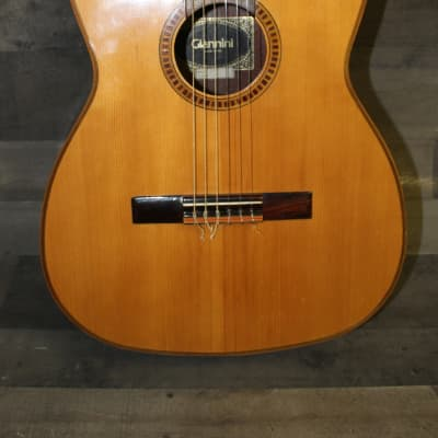 Giannini AWN-31 1974 Natural for sale