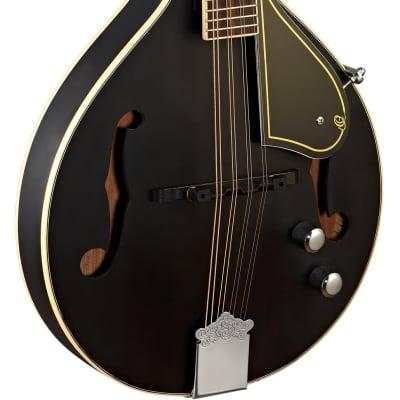 ORTEGA Ortega RMAE40SBK E-Akustik Mandoline schwarz for sale