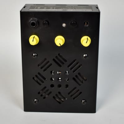 Critter & Guitari Terz Amplifier (Made for Third Man Records/Jack White)