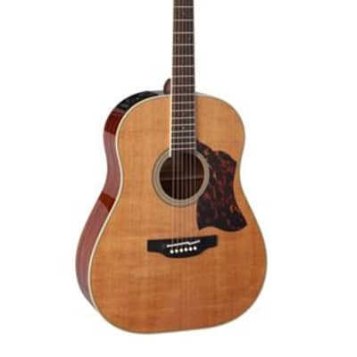 Takamine CRN-TS1 Slope Shoulder Dreadnought with Case Natural