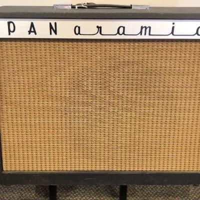 Vintage 1960's Panaramic  Model 1210 Tube Amplifier Magnatone Troubadour 213 for sale
