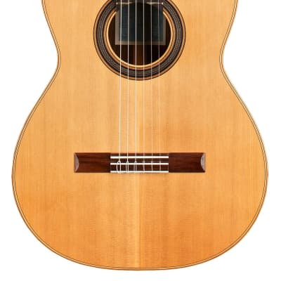 Loriente Clarita Classical Guitar Cedar/Indian Rosewood for sale