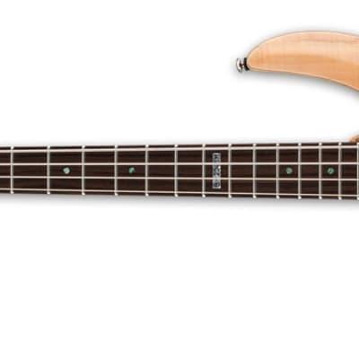 ESP LTD B-204SM Bass Guitar - Natural Satin, Left for sale