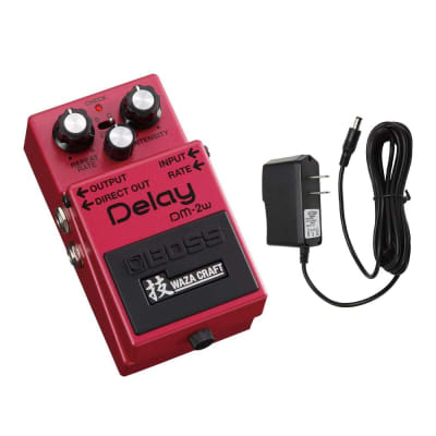 Boss DM-2W Delay Waza Craft Guitar Effects Pedal with PigHog PP9V Pig