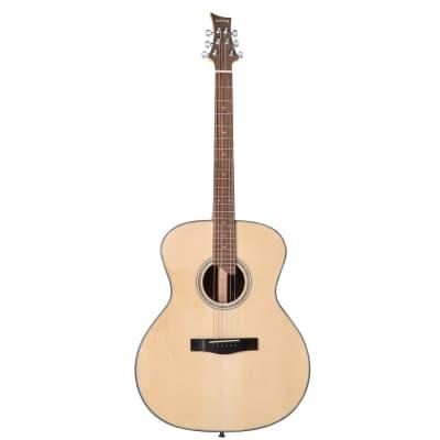 Riversong P551-A guitare acoustique folk, auditorium for sale