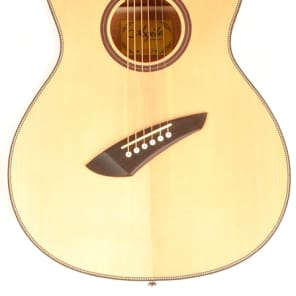 Agile Renaissance 62527 NA 6 String Acoustic Multiscale Fan Fret for sale