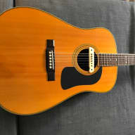 Washburn D-29 s/n late 1980s for sale