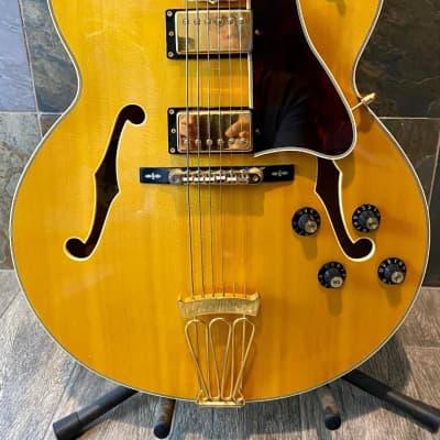Spectacular Rarest of Rare Short Scale Epiphone Elitist Byrdland Blonde Nude 2003 (0281) for sale