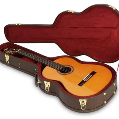 Access ACSSA1 Brown Seasonal Small-body Acoustic Guitar Hard Case