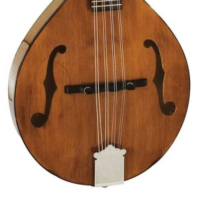 Barnes and Mullins Mandolin 'Wimborne' BM600 for sale