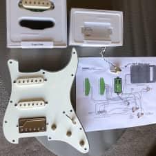 Fishman Stratocaster