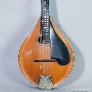 Washburn Lyon and Healy Style C 1925 Maple and Spruce for sale