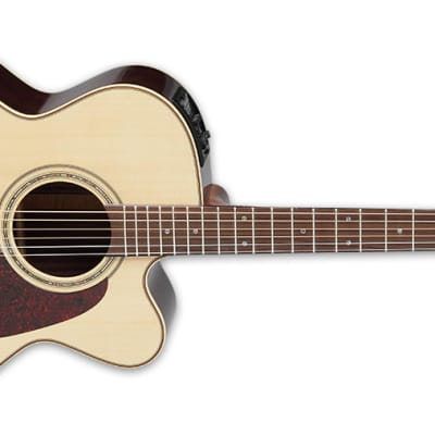 Takamine P5JC Pro Series 5 Cutaway Acoustic Guitar Natural Gloss for sale