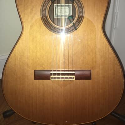 Jim Redgate Classical Guitar 2000 Satin and Gloss Polyurethane for sale