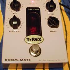 T-Rex Roommate