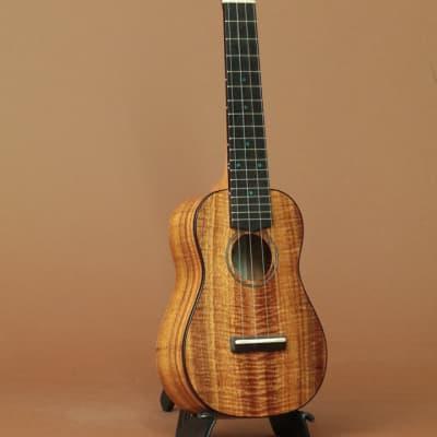 FUJIGEN(FGN) FUS-TS-02 Soprano for sale