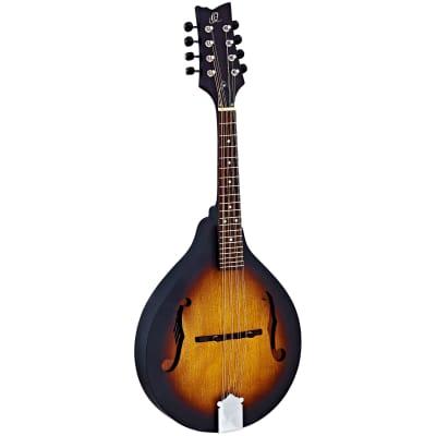 Ortega RMA5VS for sale