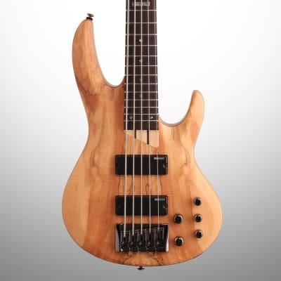ESP LTD B205SM Electric Bass, 5-String, Natural Satin