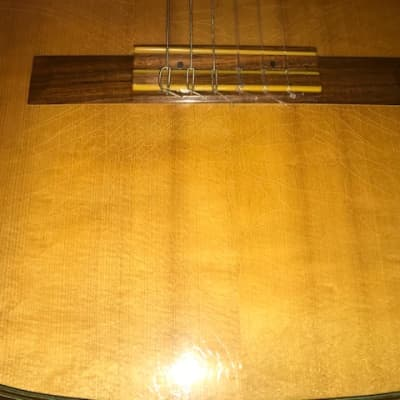 Hauser Classical 1956 for sale