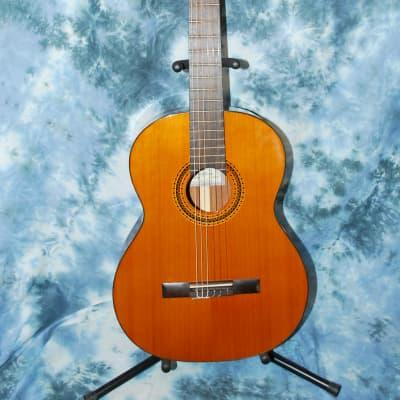 2012 New World Bubinga Model Classical Guitar Truss Rod New Strings Deluxe Original Hard Case for sale