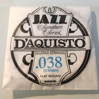 "D'Aquisto RARE Jazz Signature Series String .038"" Flatwound"