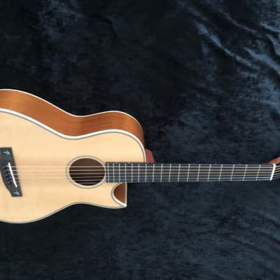 New Terry Pack PLMS acoustic parlour guitar, solid mahogany back / sides, Sitka top, 45mm wide  nut for sale