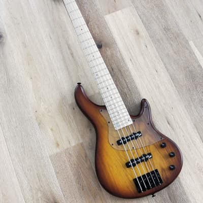 STR Sierra LS50 - 5 String Bass Guitar With Aguilar Pickups - Made In Japan - NEW for sale