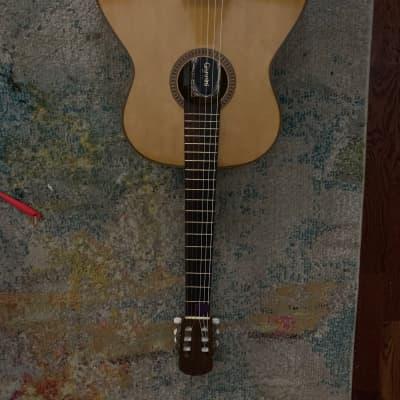 Giannini AWN-31 1974 Brazilian Rosewood for sale