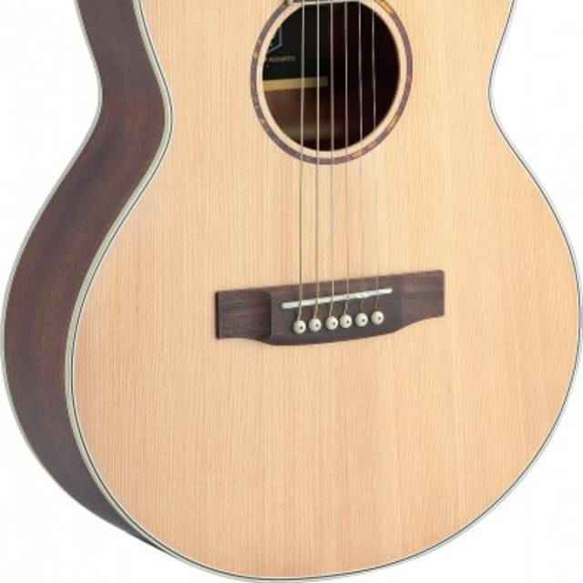 James Neligan Asyla Series Mini Auditorium Travel Guitar w/ Solid Spruce Top image