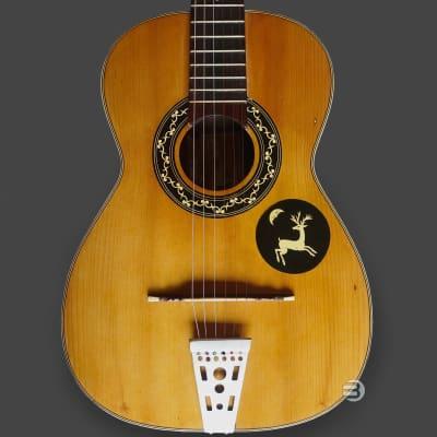 Carmelo Catania - Decorated Sicilian Gipsy Folk Guitar - Shellac Finish for sale