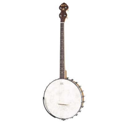 Pilgrim Celtic Dawn Open Back Tenor Banjo VPB 09 T for sale