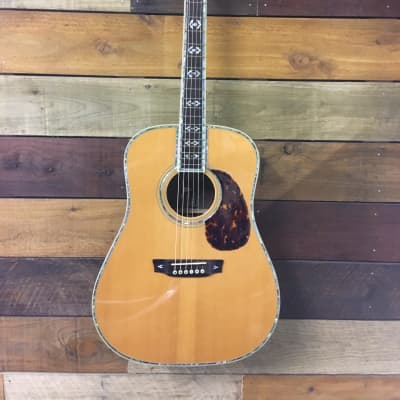 Foley Rosewood Dreadnought  Natural Gloss for sale