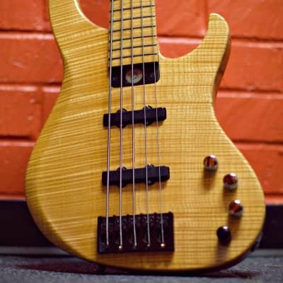 Modulus Genesis 5 Strings Bass 1999 for sale