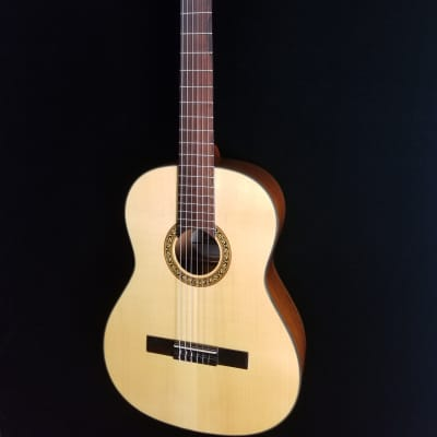 Giannini Classical Guitar, GWNEW 2, Natural for sale