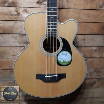 Beaver Creek BCB05CE acoustic electric bass for sale