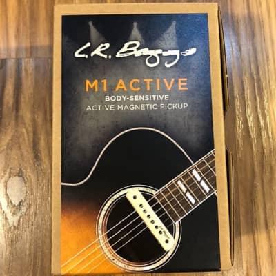 L R Baggs M1 Active for sale